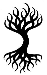 amy's logo3
